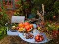 Früchte, Ernte, autark werden