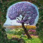 Kopf Pflanze Baum Mensch
