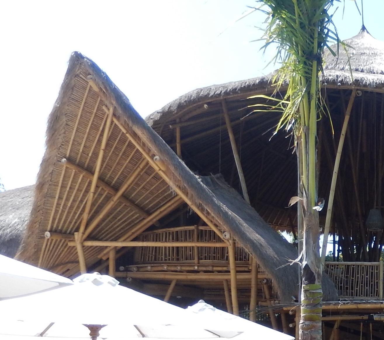 Termiten Im Haus: Und Zum Sonntag Noch … Bambus! « Bumi Bahagia / Glückliche