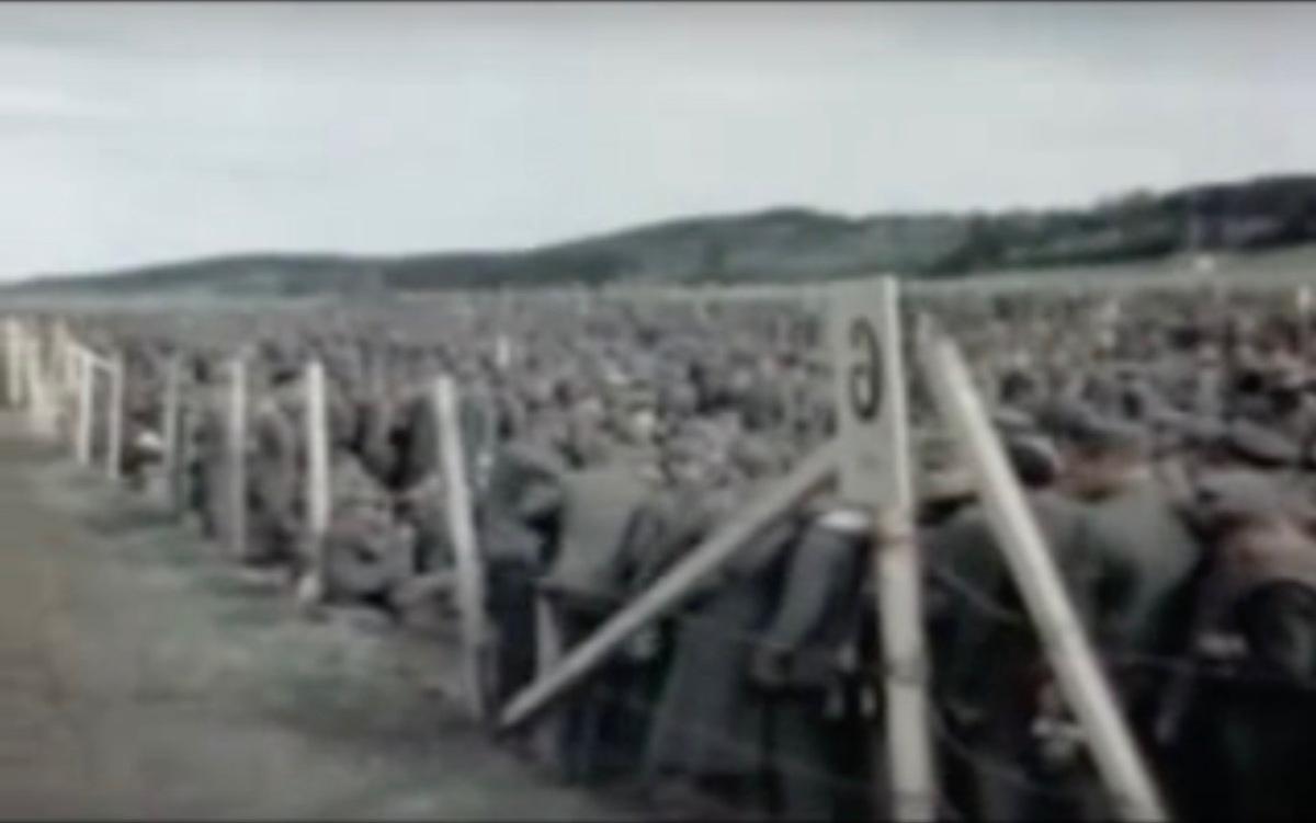 Die Absicht, Deutschland zu vernichten / Ich habe nichts zu ergänzen